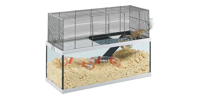 jaula de cristal para jerbo