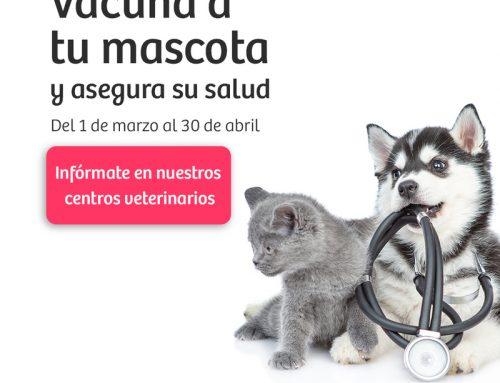 Vacunación 2021 · Protege a tu mascota en Maskokotas
