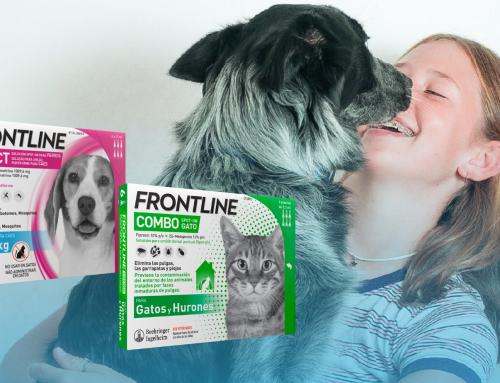 Protege a tu mascota con Frontline