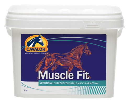 Muscle Fit Sobres 900 g